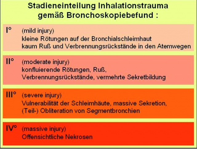 Recommendations for the treatment of severe burn injuries in the ...